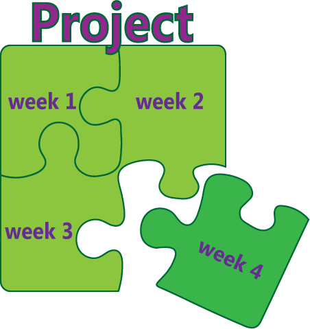 project-puzzle160916